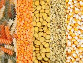 Legumes and, Grains — Stock Photo