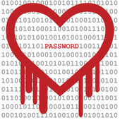 Heartbleed with binary and password — Stock Vector