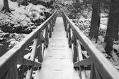 Iced Wooden Footbridge in the Black Forest — Stock Photo