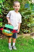 Menino novo com uma cesta de frutas e flores para shavuot — Fotografia Stock
