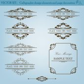 Vector Set of Vintage Design Elements — Stock Vector
