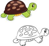 Cartoon turtle — Vector de stock
