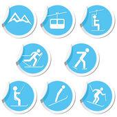 Winter sport icons set. — Stock Vector