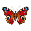 Peacock butterfly. Hand drawn vector illustration — Stock Vector