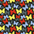 Seamless pattern with colorful butterflies. Vintage style — Stock Photo #50379433