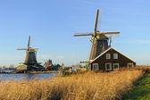 Old Dutch windmills in Koog Zaandijk, The Netherlands — Stockfoto