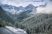 Prima neve nelle alpi svizzere, svizzera — Foto Stock