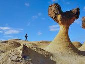 Mushroom rock — Stock Photo