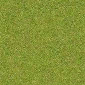 Short, flattened green grass. — Stock Photo