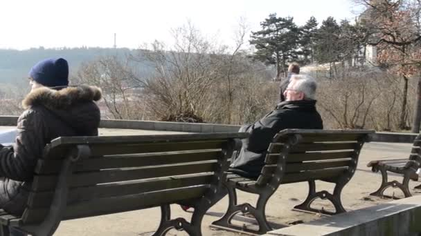 People relax in the park, sits on a bench and walks — Стоковое видео