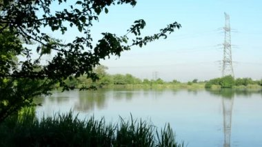Lake(shore) - with green nature (tree and grass) with high voltage — Stock Video