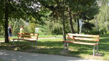 Benches in the park - people in the background — Vidéo