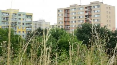 Flats (housing estate) with nature (trees) — Video Stock