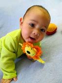 Neugeborene jungen — Stockfoto