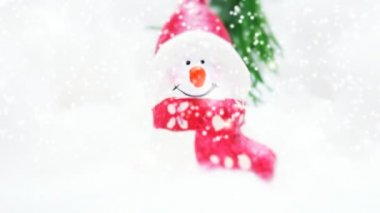 Sneeuwpop — Stockvideo