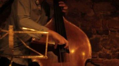 Jazz Contrabass — Stock Video