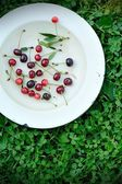 Sweet cherry fruits on the grass — Stock Photo