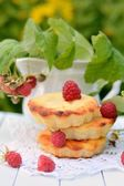 Small cheesecakes with raspberry in the country — Foto de Stock