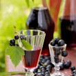 Drink of black currant — Stock Photo #51403891