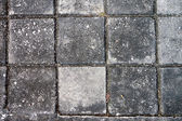 Top view Square brick on pavement — Stock Photo