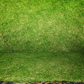 Perspective Grass room with soil ground Background — Stock Photo