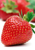 One strawberry — Stock Photo