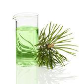Jehličnaté extrakt pro kosmetologii — Stock fotografie