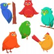 Cartoon set of colorful cute funny birds — Stock Vector