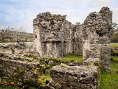 Ruins of the Gonio Fortress in Ajara region — Stock Photo