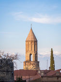 Sighnaghi, the capital of the wine region Kakheti — Стоковое фото
