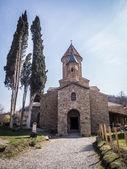 Ikalto Katedrali bölgedeki: kakheti, georgia — Stok fotoğraf