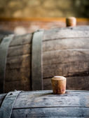 Wine barrel with wooden bung in the wine region — Stock Photo