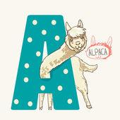 Letter A alpaca — Stock Vector