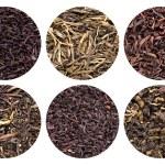 Assortment of dried tea. — Stock Photo #44949937