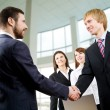 Businessmen handshake — Stock Photo #44751085