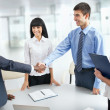 Business people shaking hands — Stock Photo #44798329