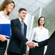 Business people greet each other — Stock Photo #44864133