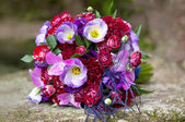 Bouquet of colorful fresh flowers on natural background. — Stockfoto