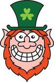 Leprechaun wearing  hat — Stock Vector