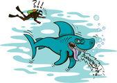 Hai und taucher — Stockvektor