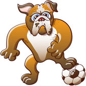 Bulldog stepping on a soccer ball — Vecteur
