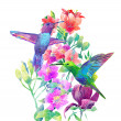 Exotic flowers and birds — Stock Photo #45370015