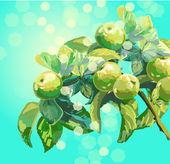 ветка с листьями и яблоки — Cтоковый вектор
