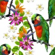 Exotic birds and beautiful flowers — Stock Vector #48260151