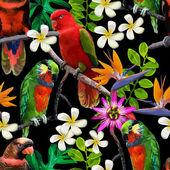 异国情调的鸟和美丽的花朵 — 图库矢量图片