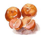 акварель яблоки — Стоковое фото
