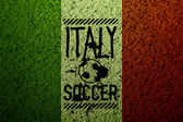 Italy flag soccer grass texture — Stock Photo