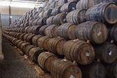 Wine barrels — Stock fotografie