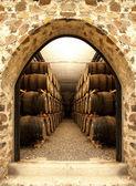 Wijn vaten — Stockfoto