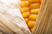 Makro, gelb, mais, zuckermais, appetitlich, lebensmittel, gesundes essen — Stockfoto